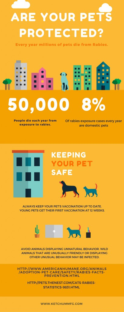 Rabies Protection Infographic