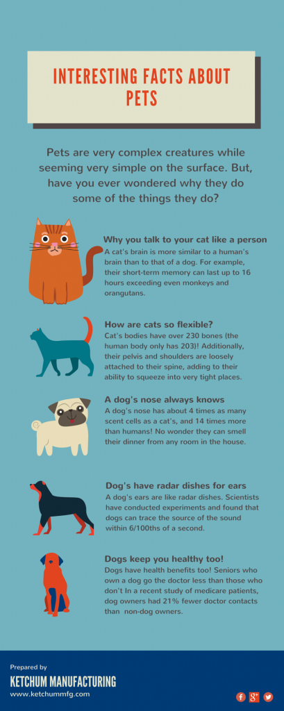 Infographic on Facts about your pets