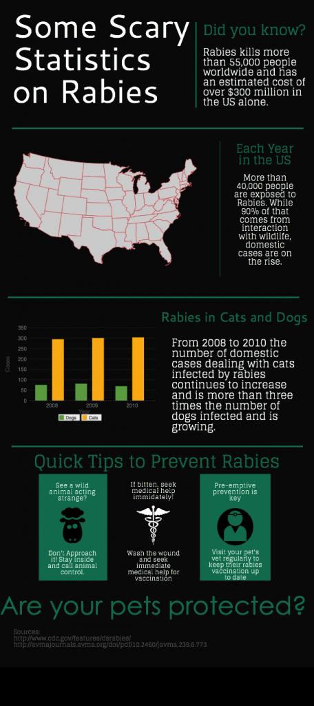 Rabies Statistics Infographic