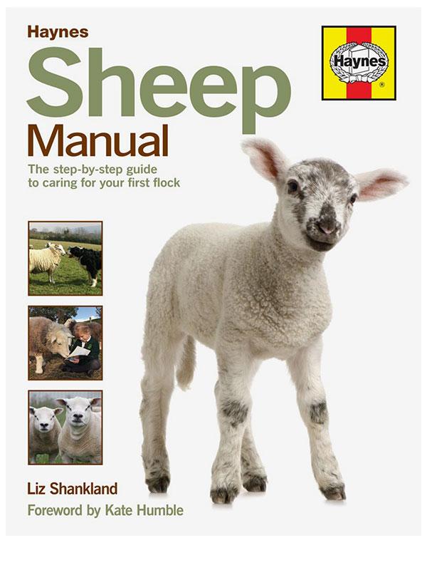 Haynes Sheep Manual