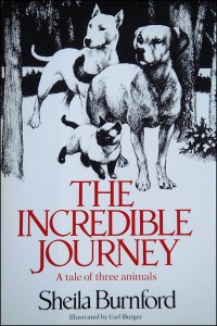 Book Cover: Incredible Journey