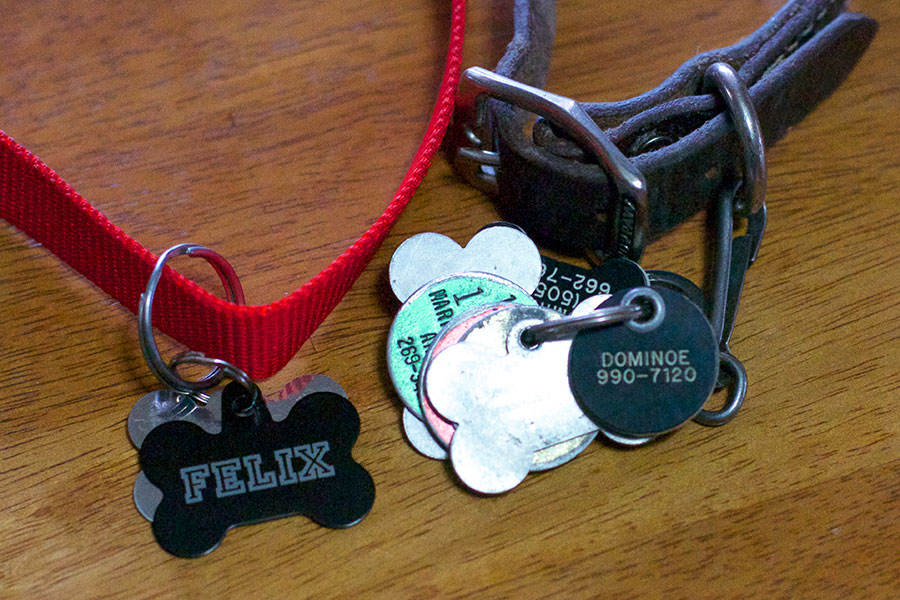 Pet ID Tags for Felix and Dominoe