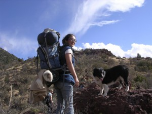 Dog Hike with Owner
