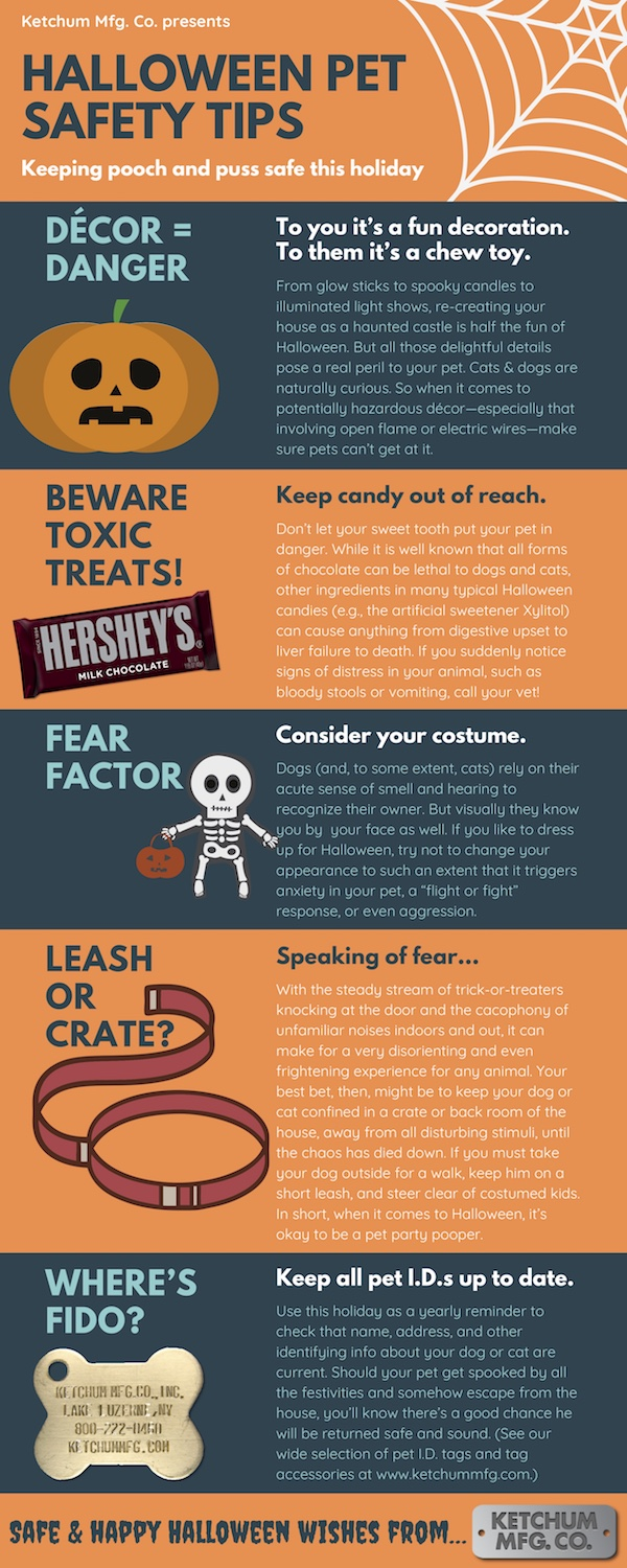 Halloween 2018 pet safety infographic