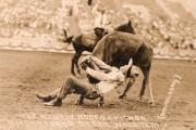 Bulldogging
