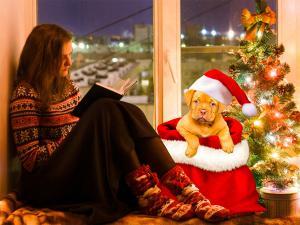 Girl with Christmas dog