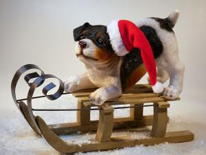 Christmas dog on sled
