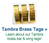 tambra brass tags